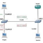configure-vlan-access-trunk-ports