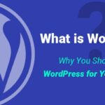 What is WordPress? A Complete Guide for Beginner's